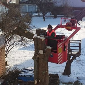 Baumarbeiten
